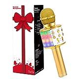 Fede Karaoke Mikrofon, Drahtloses Bluetooth Mikrofon für Kinder, Lustige Geschenke Spielzeug für Teenager Mädchen Jungen, Tragbares KTV Lautsprecher Recorder für iPhone/Android/iPad/PC