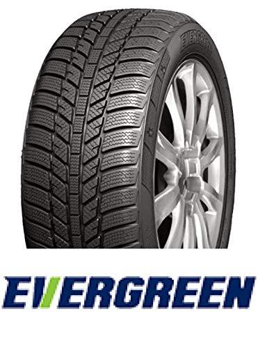 Evergreen Reifen