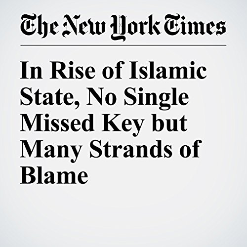 In Rise of Islamic State, No Single Missed Key but Many Strands of Blame cover art