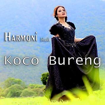 Harmoni Musik Koco Bureng