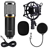 QIBOX BM-800 Pro Condenser Microphone Mic for Studio Broadcasting & Recording with Shock Mount, XLR to 3.5mm Cable and Pop Filter (Black)
