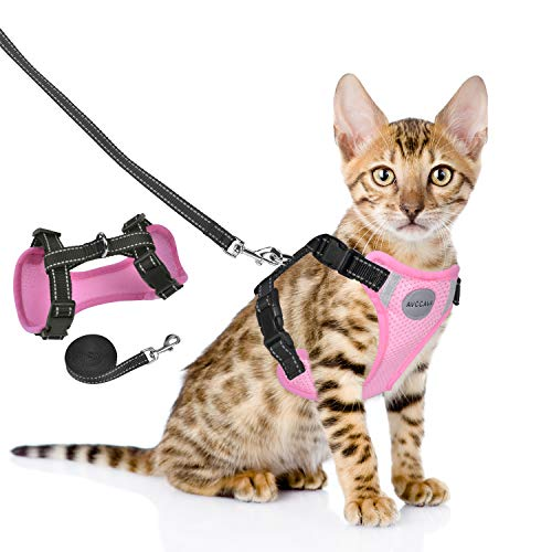 AVCCAVA Cat Harness and Leash Set for Walking Escape Proof, Adjustable Soft Breathable Kittens Vest with Reflective Strip for Cats Small Dog, Step-in Comfortable Outdoor Vest Pet Safety Jacket