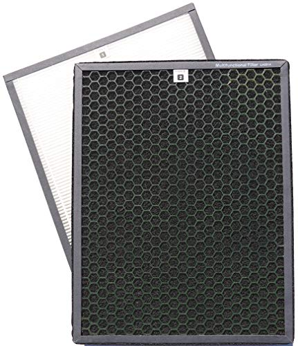 Green Air Encore HEPA and Odor Fighting Filter Combo Pack