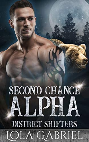 Second Chance Alpha District Shifters Book 1 product image