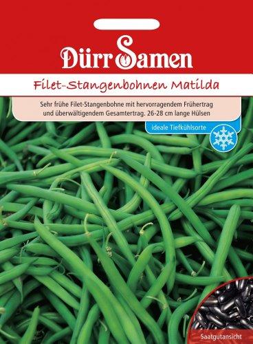 Filet-Stangenbohnen Matilda