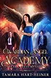 Year 2: Redemption (Guardian Angel Academy)