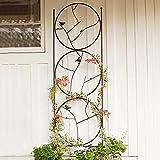 Trellises @SY Reja De Meta Decorativa Soporte para Plantas Enredaderas Estilo Rustico Reja De Jardín con 220cm De Altura Celosía de Pared de Gran Planta trepadora