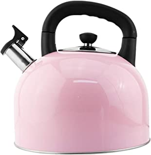 Tea Kettle 304 Stainless Steel Whistling Tea Kettle with Foldable Pot Handle Teakettle Bright Color High Capacity Kettle Suitable for Gas Gas Induction Cooker Teakettles (Color : Pink, Size : 5L)