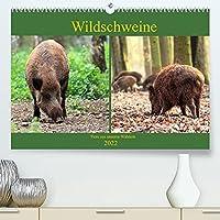 Wildschweine - Tiere aus unseren Waeldern (Premium, hochwertiger DIN A2 Wandkalender 2022, Kunstdruck in Hochglanz): In unseren Waeldern sind Wildschweine, auch Schwarzkittel genannt, beheimatet (Monatskalender, 14 Seiten )