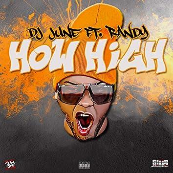 How High (feat. Randy)