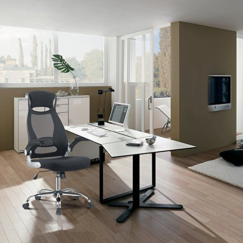 TRANSPEARL Office Chair High Back Mesh Home Office Swivel Computer Task Chair with Flip up Armrest & Head Support Height Adjustable