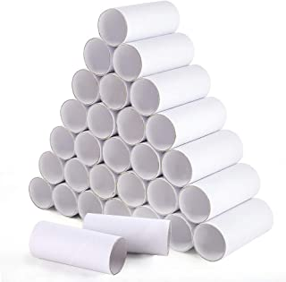 Sntieecr 32 Pack 3.9 Inches White Craft Rolls Sturdy Cardboard Tubes for DIY Creative Handmade Projects