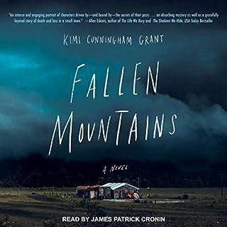 Fallen Mountains cover art