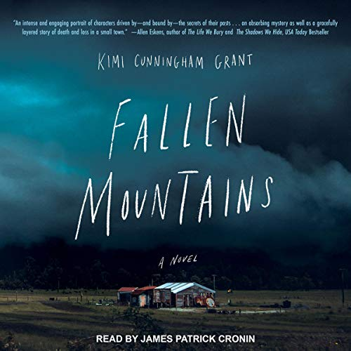 Fallen Mountains cover art