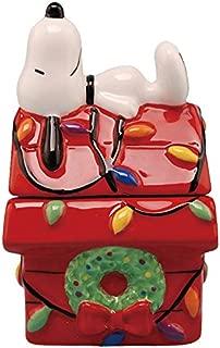 Westland Giftware Christmas Doghouse Magnetic Ceramic Salt & Pepper Shaker Set, Multicolor