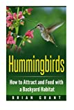 Die besten 1 Hummingbird Feeders - Hummingbirds: How to Attract and Feed with a Bewertungen