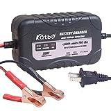 51AhB4TaZmL. SL160  - Everstart Plus Smart Battery Charger