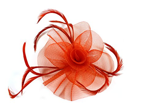 Ladies Elegant Looped Net with Centre Swirl Fascinator on a Clip and Brooch Pin