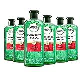 Herbal Essences PURE: renew Farbschutz & Glanz Shampoo mit Aloe + Mango, 6er Pack (6 x 225 ml),...