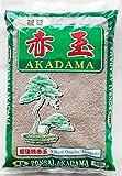 Japanese Super Hard Akadama for Bonsai/Succulent Soil - Small 13 L / 21 Lbs