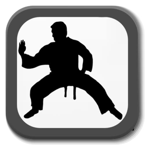 Martial arts - Training - Combats
