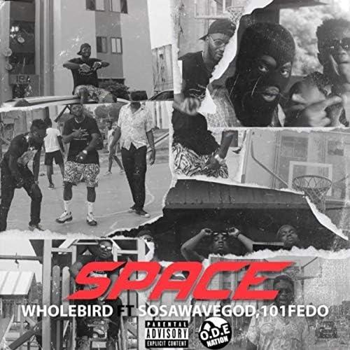 Wholebird feat. SOSAWAVEGOD & 101fedo