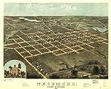 Historic Panoramic Map Reprint: Tecumseh, Lenawee Co., Michigan 1868. 36 x 28