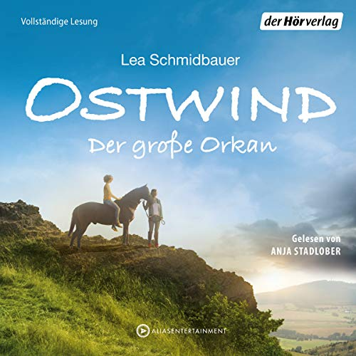 Der große Orkan audiobook cover art