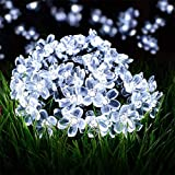 Solar Flower String Lights,22ft 50 Led Cherry Blossoms String Lights Outdoor Waterproof Solar Powered Fairy Lights for Outdoor,Garden, Patio (White)
