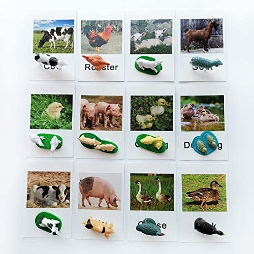 Montessori Animal Match - Miniature Forest Animal Toy Figurines with Matching Cards Montessori Language Materials Preschool Learning Toy NEWTT0010YS3