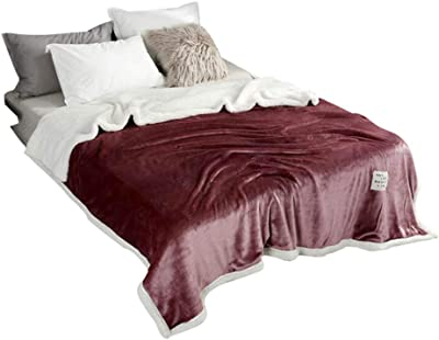 LVRUIA Winter Blankets Bed Throws Full/Queen/King Size - Soft Warm Blankets Flannel