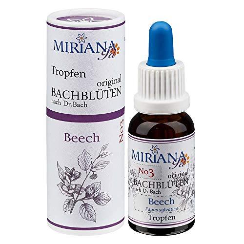 Bachblüten Nr. 3 Beech - 20ml Essenz - MirianaPet für Heimtiere