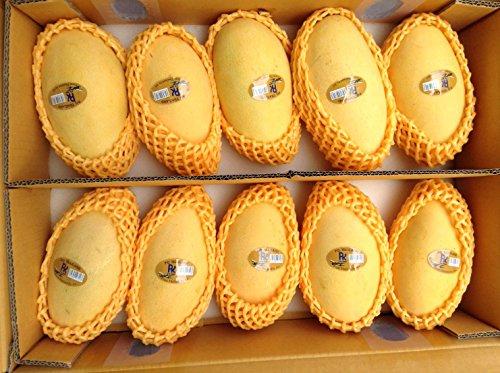 タイ産 マンゴー 4.5kg(10-14玉) ナムドクマイ種 コクのあるまろやかな甘みと適度な酸味 新鮮 タイ輸入