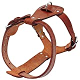 Beirui Genuine Leather Dog Harness - No Escape Pet Training Walking Harness for Large Dogs Pitbull Boxer Mastiff - Large Chest for 24-29.5'(Less Than 45 pounds)