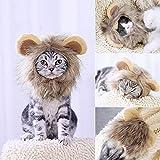 Namsan kostüm für Katzen Hunde Löwe Haar Kopfbedeckung für Halloween Weihnachten Festival Party
