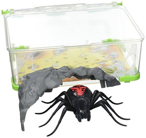 Kanaï Kids – kk290322 – terrarium + spin rodeuse – Wild Pets – seizoen 2 – zwart