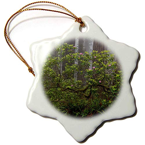 Leop345old Forests - California. Misty morning with Rhododendron and redwoods, Redwood NP - 3 inch Snowflake Porcelain Ornament