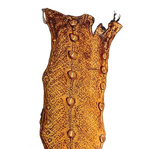 Cuero exótico esturión cuero pescado cuero suave dureza genuino cuero herramientas cuero artesanía cuero crudo cuero para artesanía cuero para artesanía cuero para cartera color arena