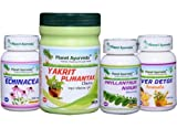 Liver Care Pack for Healthy Liver - Ayurvedic Remedy by Planet Ayurveda in USA