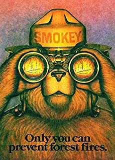 Smokey The Bear - Only You Can Prevent Forest Fires - 1987 - Promotional Magnet
