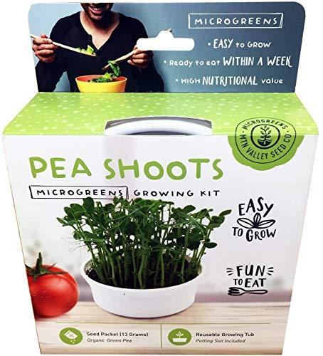 shoots Mini Microgreens Growing Kit - Pea Shoots - Grow Your Own Organic Gourmet Micro Greens Indoors: Salad, Sandwich & Garnish - Easy & Fun - Great Gift or Stocking Stuffer (Pea Shoots)