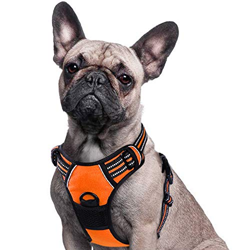 Eagloo Dog Harness No Pull, Walking Pet Harness with 2 Metal Rings and Handle Adjustable Reflective Breathable Oxford Soft Vest Easy Control Front Clip Harness Outdoor for Small Dogs Orange