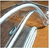 Lonas Impermeables Exterior,Lona Plástico Transparente Impermeable de PVC Con Ojales,Lona de Protección Vaso Transparente,0,5 Mm de Espesor,para Invernadero Jardín Planta (2.4x3m/7.9x9.8ft)
