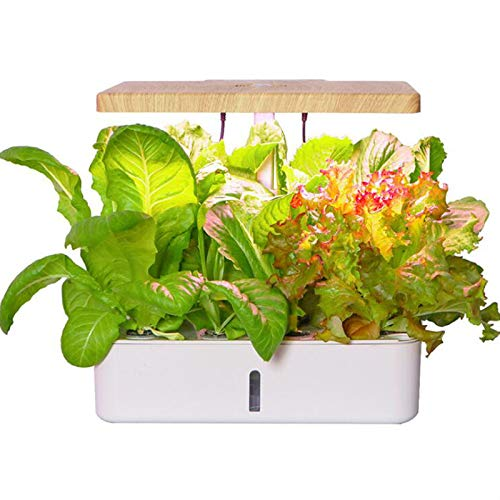 Chnzyr Hydroponics Growing System Automatic Water Circulation Planting Box 4L Transparent Scale Large Capacity Water Tank, 16 Hours Automatic Light Filling Soilless Cultivation Planter, White