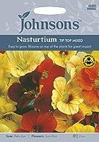 JOFL 英国ジョンソンシード Nasturtium Tip Top Mixed ナスターチウム・チップ・トップ・ミックス