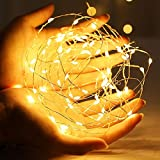 fly away Guirnalda de luces LED de alambre de cobre con guirnalda de luces...