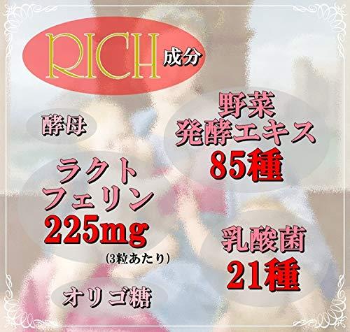 ラクトフェリンRich(リッチ)21種の乳酸菌野草発酵エキス85種(90粒ピルケース付)