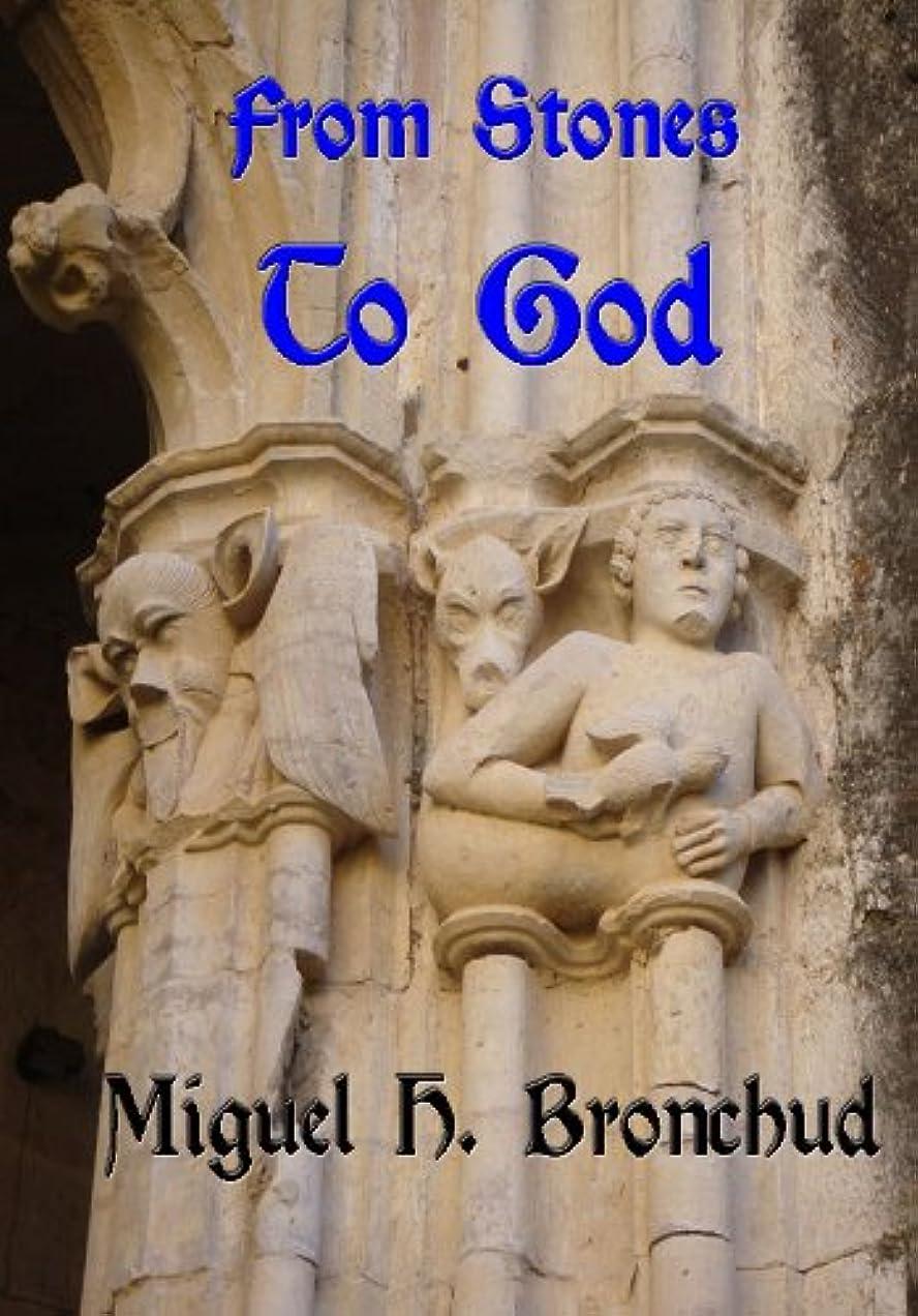レジデンスハンサム無限大From Stones to God (History Book 1) (English Edition)