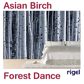Asian Birch Forest Dance