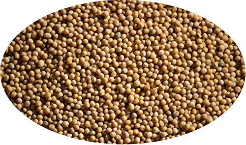 Eder Gewürze - Senfkörner, gelb - 1kg / Senfsaat gelb